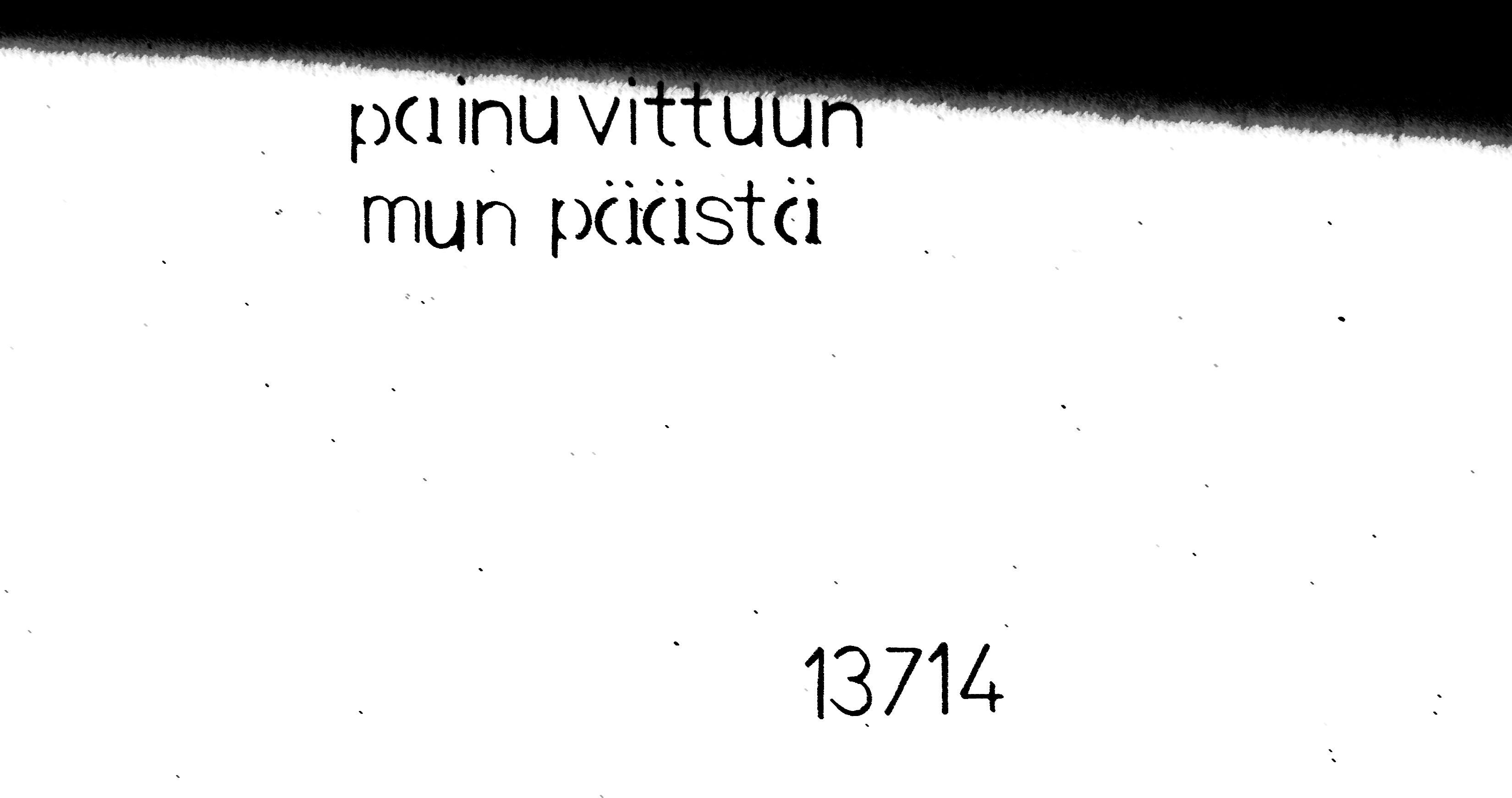vittuun2
